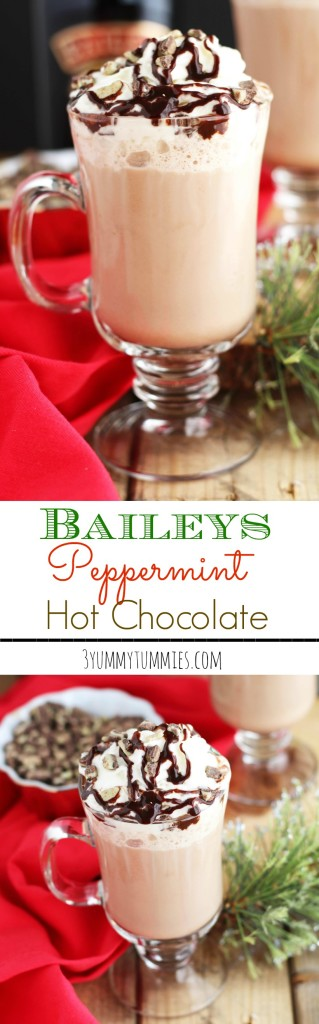 The ultimate adult Hot Chocolate is spiked with Baileys and Peppermint Schnapps.