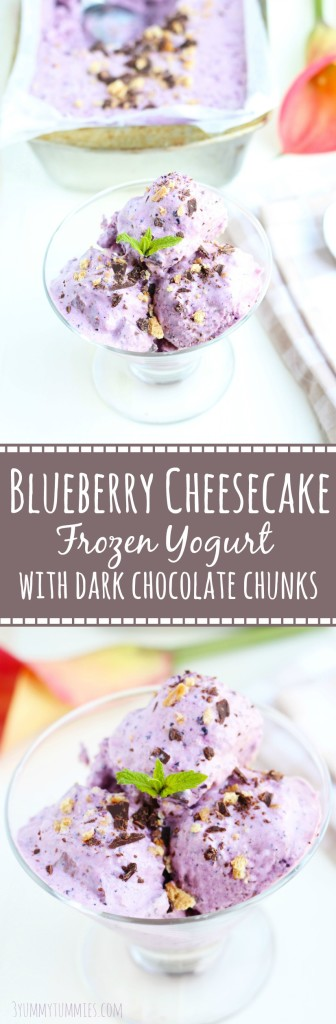 This Blueberry Cheesecake Frozen Yogurt is made with a food processor and loaded with blueberries, dark chocolate chunks and graham cracker crumbs. A must try this summer!