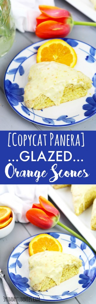 These Glazed Orange Scones taste just like the Panera recipe!