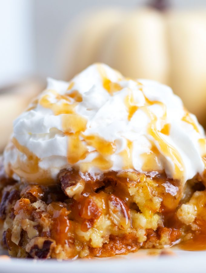 This easy, Pumpkin Dump Cake is sure to be a hit this fall. Vanilla cake mix is used as the base with pumpkin, sweetened condensed milk and a pecan and butterscotch chip topping. Serve it warm with whipped cream and a caramel sauce topping for a truly decadent treat.